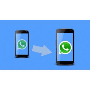 Trasferimento whatsapp